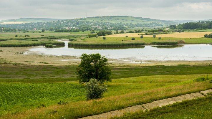Organizația Națiunilor Unite pentru Alimentație și Agricultură este gata să susțină agroecologia în Moldova