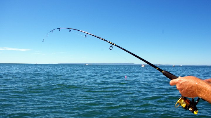 Un englez a fost la un pas să fie ucis de peştele pe care tocmai l-a prins. Ce s-a întâmplat