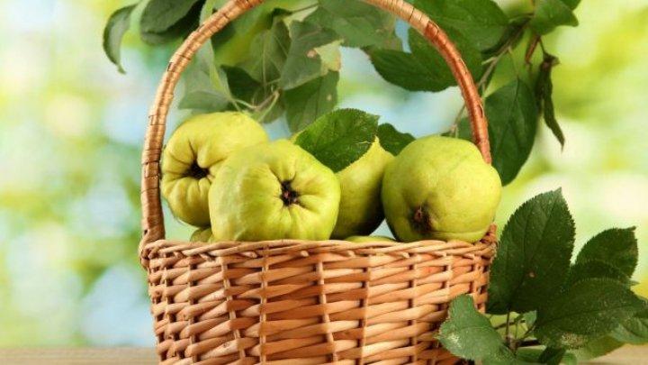 Galbenă gutuie, dulce amăruie... Beneficiile miraculoase pe care nu le ştiai despre acest fruct