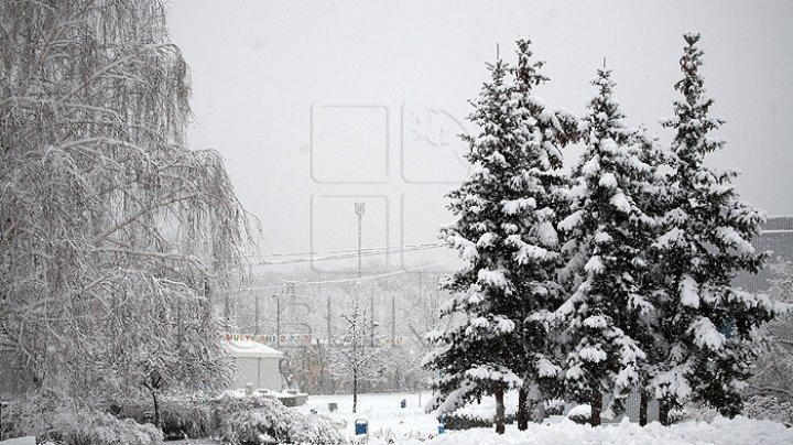 Zăpadă de peste 30 de centimetri în Moldova. Cum va fi vremea în următoarele două săptămâni (VIDEO)
