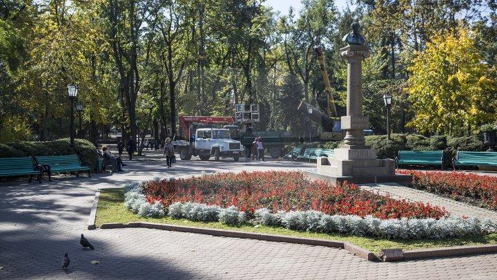 Campania de curăţare a parcului central continuă. Peste 40 de percheziţii au avut loc în centrul Capitalei