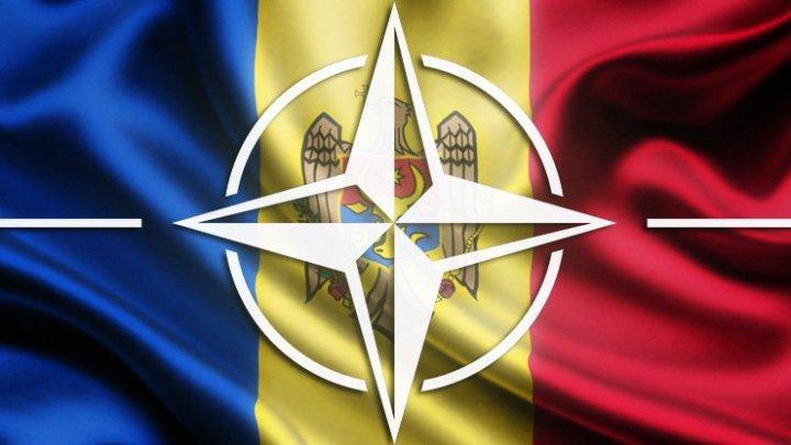 Președintele Adunării Parlamentare a NATO: Sprijinirea Republicii Moldova înseamnă apărarea întregii Europe