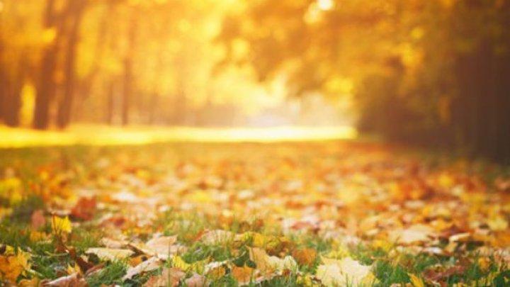 Superstiţii şi obiceiuri pentru luna octombrie. Ce să faci să-ți meargă bine