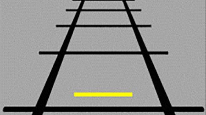 O iluzie optică face furori pe Facebook. Care linie din această imagine este mai mare?