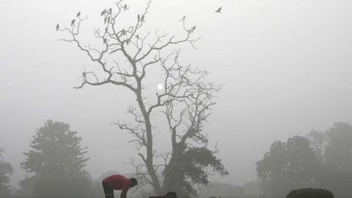 A doua zi de poluare în New Delhi. Două milioane de elevi nu au mers la şcoală din cauza smogului toxic