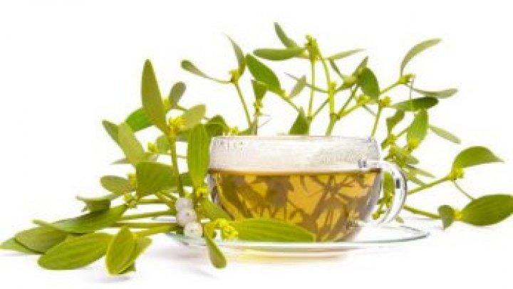Efectele miraculoase ale ceaiului de vâsc. Cum să îl prepari corect