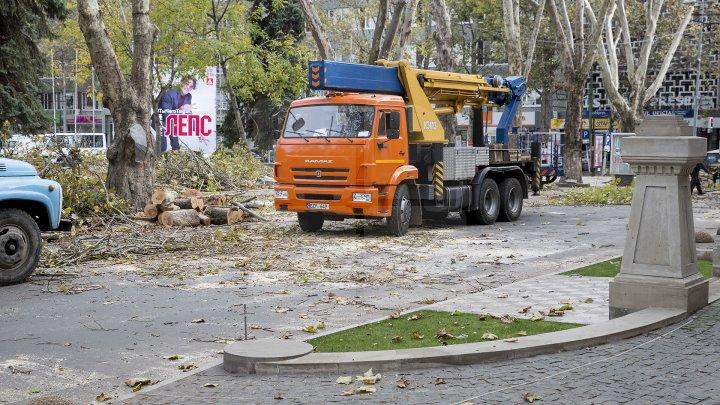 Autorităţile au început pregătirile pentru Târgul de Crăciun, pe strada 31 august din Capitală