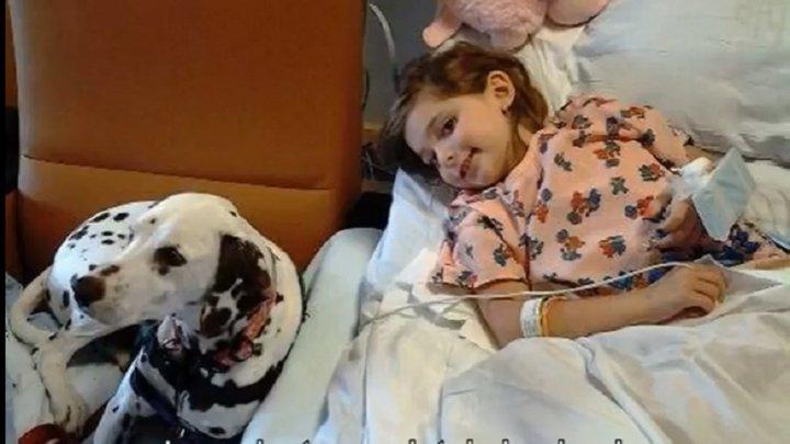 Până la lacrimi! O fetiţă şi-a pierdut ambele picioare, după ce tatăl I LE-A TĂIAT accidental cu maşina de tuns iarbă