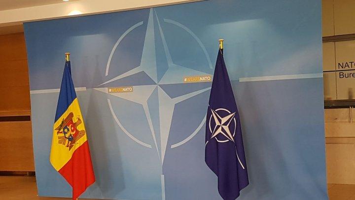 Cooperarea Republica Moldova-NATO discutată de Eugen Sturza la Bruxelles