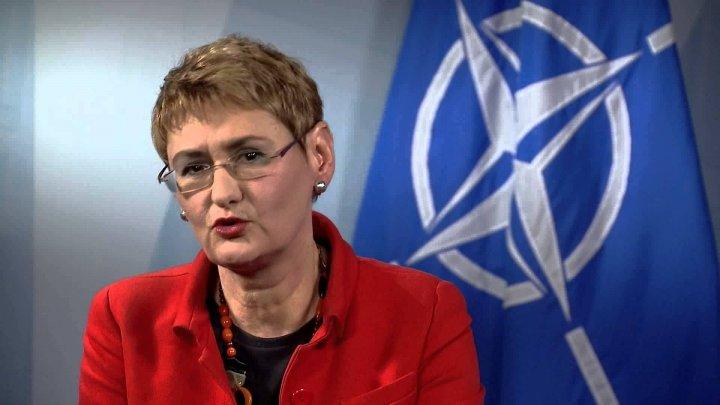 Apropiata vizită a ministrului Apărării, Eugen Sturza, la NATO este salutată de alianţă