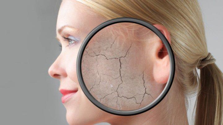 Descoperirea care permite pielii adulte să se regenereze la fel ca cea de nou-născut