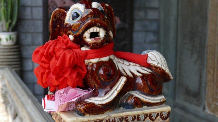Zodiac CHINEZESC 2018: Cu ce surprize vine Anul Câinelui de Pamânt pentru TOATE ZODIILE