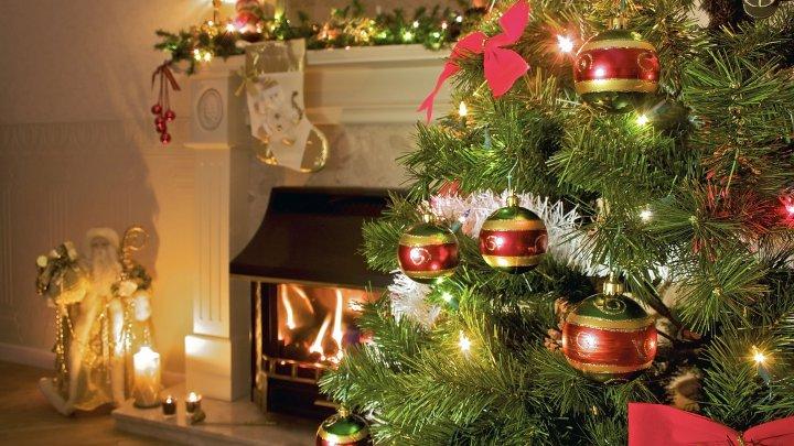 Pomul de Crăciun. Ce pericol se ascunde în bradul care îl ţinem o iarnă în casă