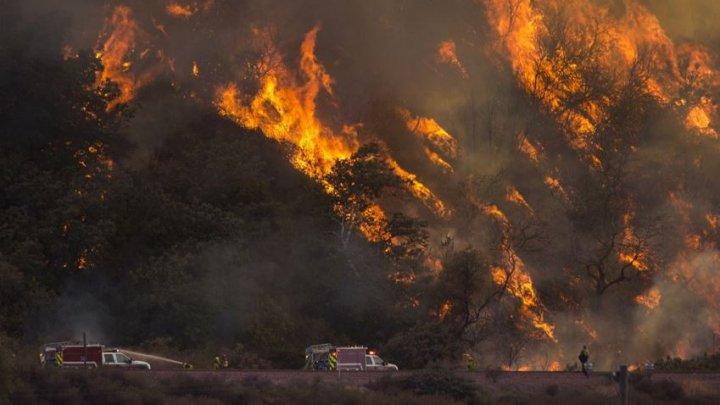Pompierii din California folosesc FOCUL pentru a combate incendiile de vegetaţie devastatoare
