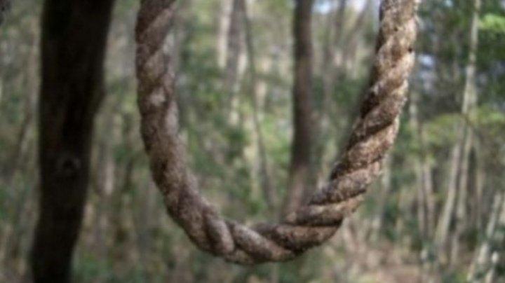 TERIFIANT! Un bărbat a fost găsit sprânzurat în pădure. Polițiștii l-au identificat