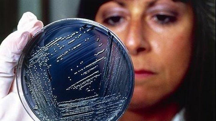 ATENŢIE! Cum arată primele simptome ale infecţiei cu Salmonella. Mergi de urgenţă la medic