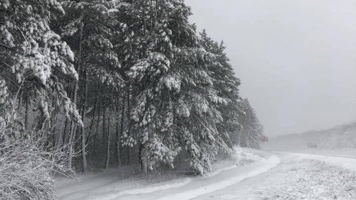 Imagini rupte din poveste! Iarna a creat UN PEISAJ SPECTACULOS pe traseul Chișinău - Leușeni (FOTO)