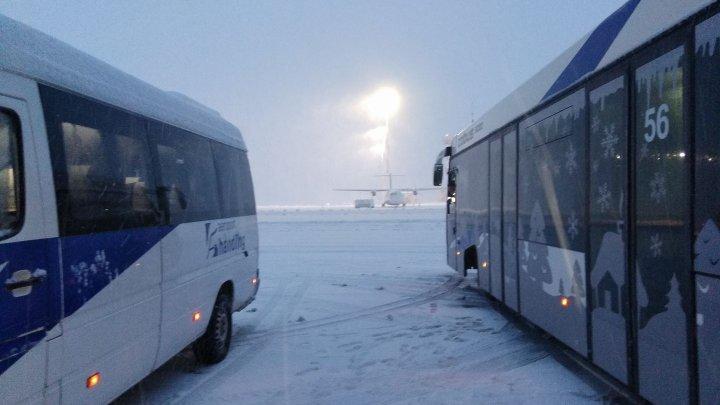 Accident pe aeroportul din Frankfurt. Pasageri răniţi în urma coliziunii dintre un autobuz şi un camion