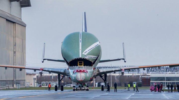 Primul Airbus Beluga XL a ieșit din uzina producătorului. Când va avea loc primul zbor