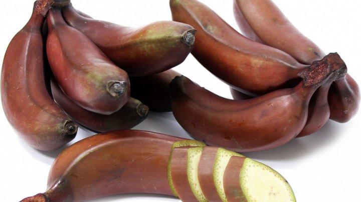Le-ai mânca? Ce sunt, de fapt, bananele roşii