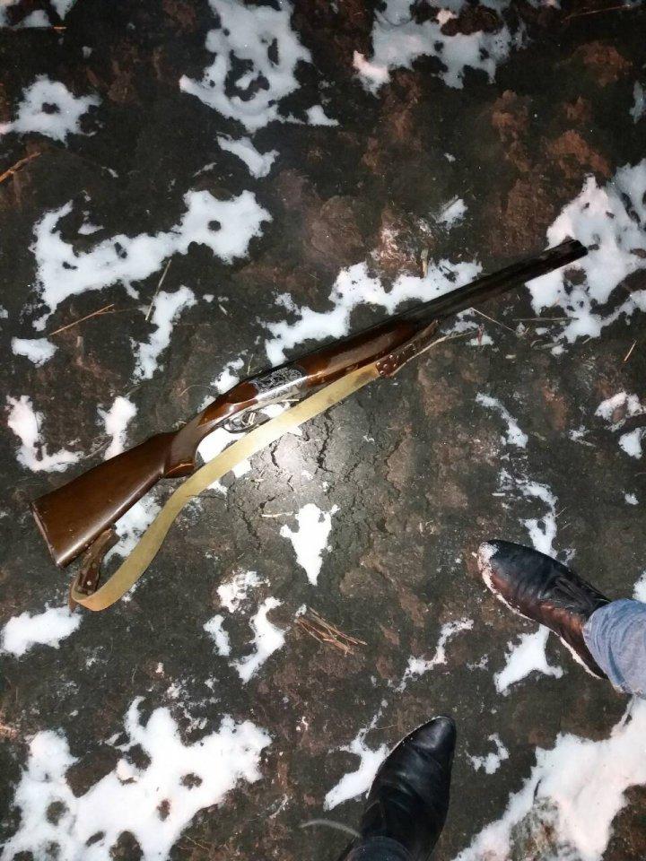 Braconieri reţinuţi în nordul ţării. Au împuşcat o cărpioară, au amplasat capcane şi aveau arme fără acte