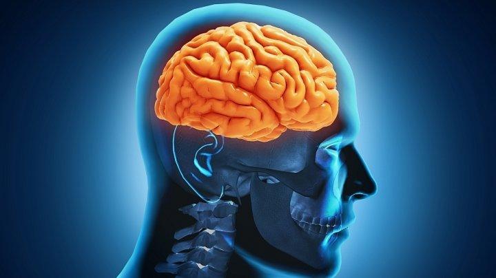 Alimentele care mențin creierul tânăr. Ce trebuie să consumi ca să îți protejezi memoria