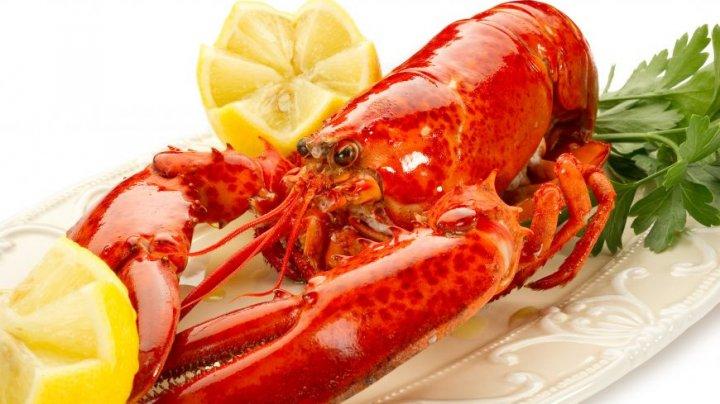 Guvernul elvețian vrea să interzică gătirea homarului în apă fiartă. Care este cauza
