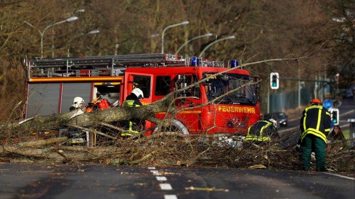 Furtuna Friederike, care a lovit nordul Germaniei, a provocat pagube de un miliard de euro