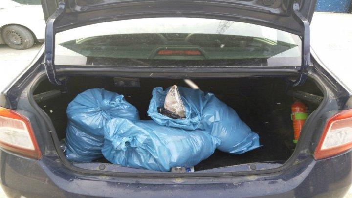 Un bărbat de 54 de ani s-a ales cu dosar penal pentru că transporta 50 kilograme de peşte fără a deţine documente legale