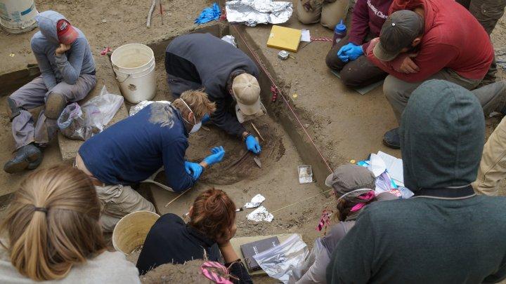 Trupul unui bebeluș mort în urmă cu 11.500 de ani oferă noi informații despre americani
