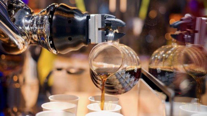 Olanda - ţara viitorului! Oamenii au fost înlocuiţi cu roboţi care prepară brânzeturi, servesc cafea şi culeg trandafiri