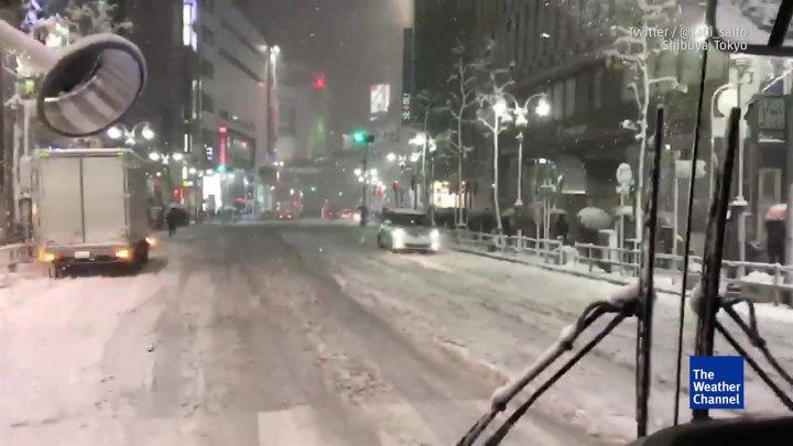 Japonia, afectată de cea mai puternică furtună de iarnă din ultimii 48 de ani