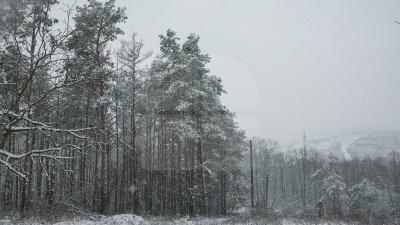 Va ninge în toată ţara. Câte grade vor indica termometrele în următoarele zile