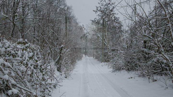 Avertizare de călătorie în Bulgaria. Sunt anunțate ninsori abundente