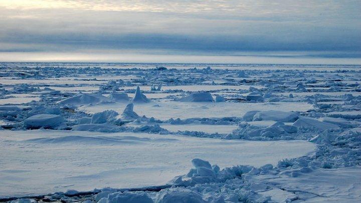 Avertismentul făcut de NASA. Topirea gheţurilor din Groenlanda şi Antarctica va avea urmări dramatice