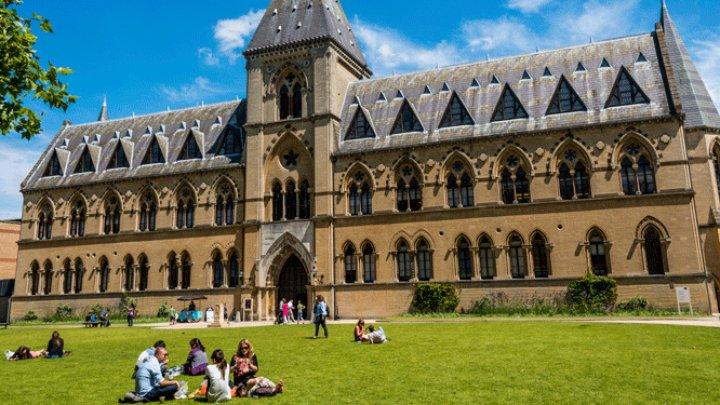 Protest în Marea Britanie. Învăţământul superior, perturbat de greva lectorilor universitari