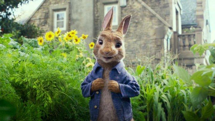 Scuze publice de la producătorii filmului Peter Rabbit. Aceştia au folosit o scenă cu un personaj alergic