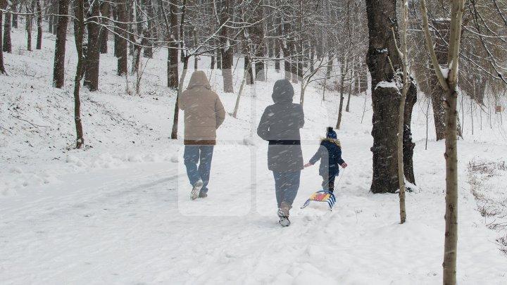 Va ninge în toată Moldova. Câte grade vor indica termometrele