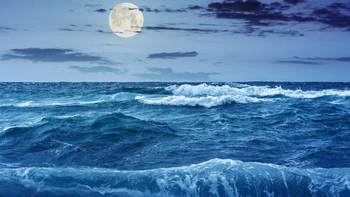 Semnal de alarmă! Ce se va întâmpla cu nivelul oceanelor până în 2100