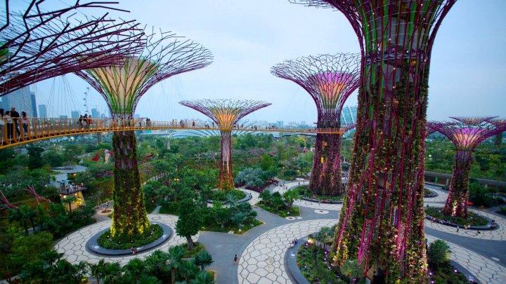 Cum ar arăta oraşul visului! Cu mașini puține şi cu grădinile suspendate