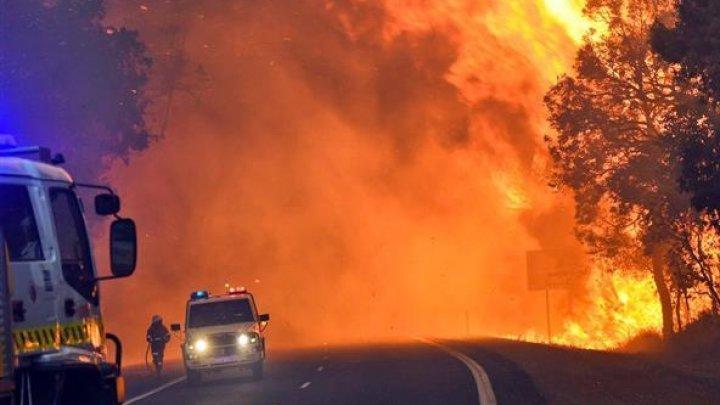 Australia, devastată de incendii. Experții spun că sunt rezultatul schimbărilor climatice