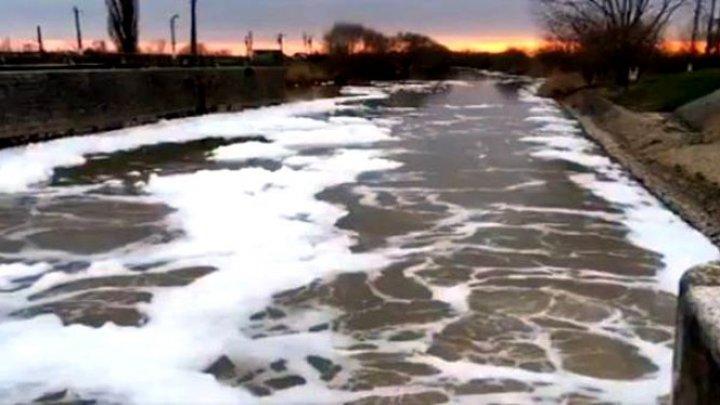 Apă cu spumă în râul Bega. Cum explică Apele Române fenomenul (VIDEO)