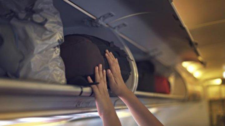 Un cățel a murit la bordul unui avion, după ce a stat închis 3 ore în compartimentul de bagaje. Stăpâna A PLÂNS ÎN HOHOTE