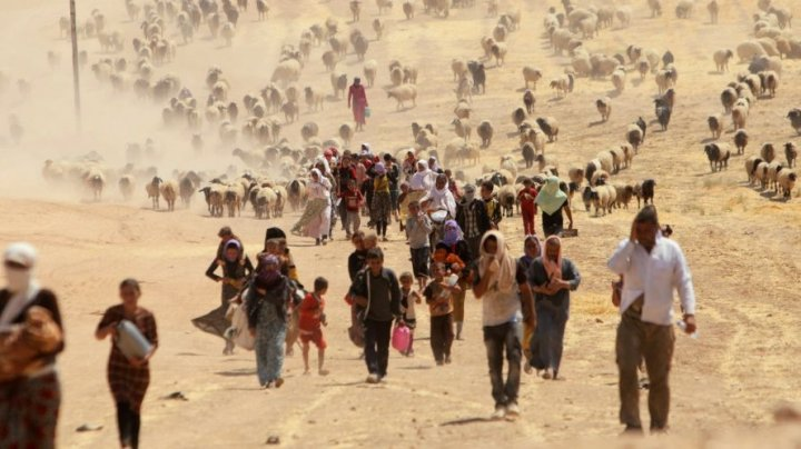 Banca Mondială: În lume ar putea exista 143 de milioane de migranţi climatici