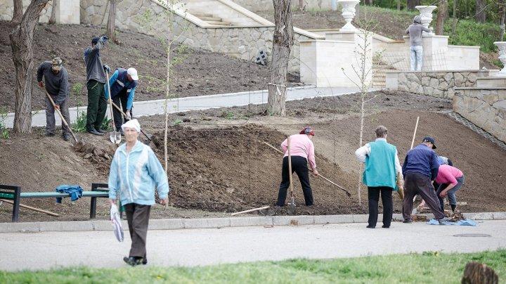 Oraşul va fi mai curat! În Capitală începe marea curăţenie de primăvară