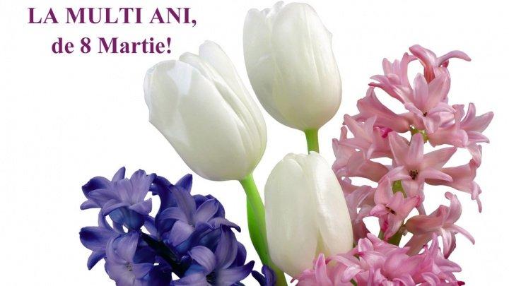 FELICITĂRI 8 MARTIE. Cele mai frumoase mesaje de ziua Femeii pentru mama şi iubita ta
