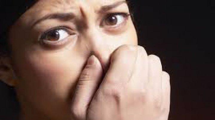 Scapă de mirosurile urâte cu ingredientele naturale pe care le ai deja în casă