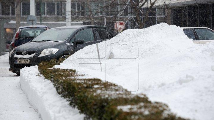 ŞEDINŢĂ DE URGENŢĂ LA GUVERN. Zăpada şi viscolul s-au dezlănţuit în Moldova. Cum se circulă la această oră pe drumurile din țară