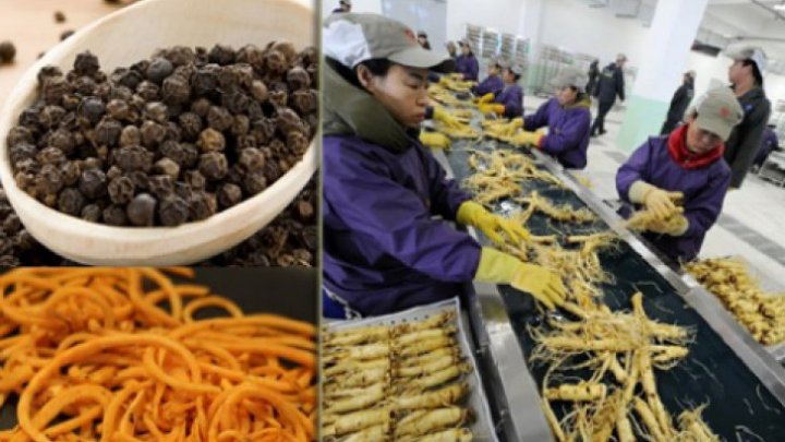 Cinci produse toxice din China, făcute din plastic şi cu pesticide, pe care şi tu le consumi