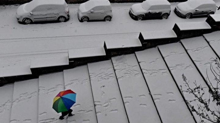 Gerul siberian face ravagii în Europa. Vânturile puternice și ninsoarea abundentă au ucis peste 20 de persoane
